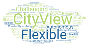 CityView - Autonomous, flexible, challenging